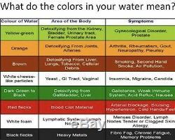 Max Detox Ionique Aqua Cleanse Detox Spa Bain De Pieds, Avec 1 Tableau Classique